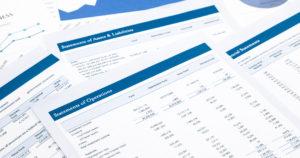 Financial Statement Audit Services